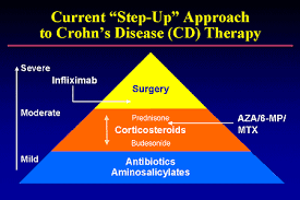Crohns Disease Treatment starts with understanding the causes, symptoms and treatment options for this inflammatory bowel disease.  Discover your options for Crohns, from medications to alternatives.